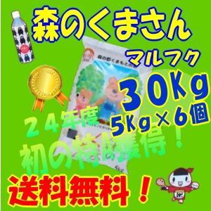 九州の米、28年産【】丸福、森のくまさん、30Kg、5Kg×6個、白米、(熊本の米)