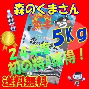 九州の米,29年産【】森のくまさん5Kg白米【29年新商品】...