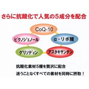 リカメンプラス(機能性食材) x3箱まとめ買い ssi健康食品|assi|02