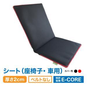 日本製 防ダニ 高反発 洗えるクション  E-COREシートタイプ【厚さ2.0cm】座部分45×40cm 背部分45×55cm|assist-2019