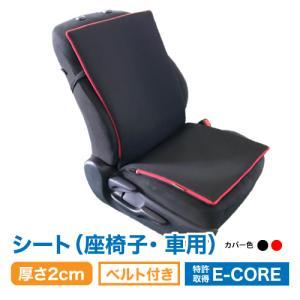 日本製 防ダニ 高反発 洗えるクション  E-COREシートタイプ【厚さ3.5cm】座部分45×40cm 背部分45×55cm|assist-2019