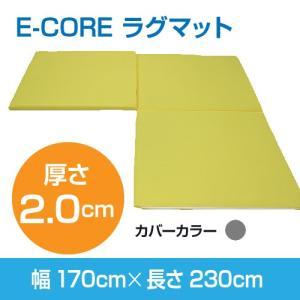 日本製 防ダニ 高反発洗えるマット  E-COREラグマット【L型】170×230×厚さ2.0cm assist-2019