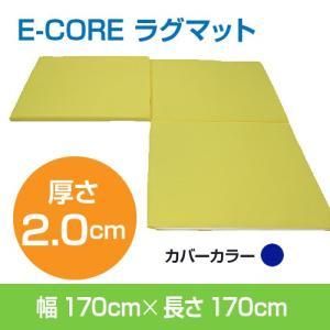 日本製 防ダニ 高反発洗えるマット  E-COREラグマット【S型】170×170×厚さ2.0cm assist-2019