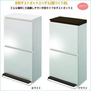 (アスベル) 分別ダストボックス ペダル2段 ワイド40L ゴミ箱 ダストBOX キッチン 分別 assistone