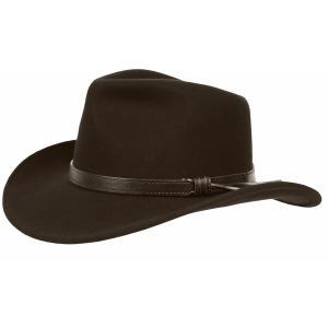 サンデイアフターヌーンズ 帽子 アクセサリー メンズ Sunday Afternoons Men's Montana Hat Walnut astyshop