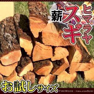 asuke 10000041 test - 母子キャンプに行ったら焚き火をしよう!焚き火をするのに必要な物