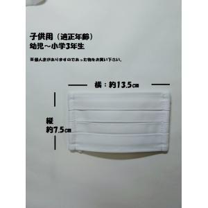 マスク 洗えるプリーツマスク(2枚入り) 南三陸製造|asutoro|11