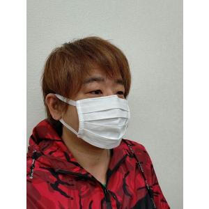 マスク 洗えるプリーツマスク(2枚入り) 南三陸製造|asutoro|03