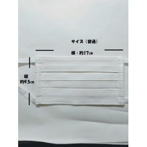 マスク 洗えるプリーツマスク(2枚入り) 南三陸製造|asutoro|04