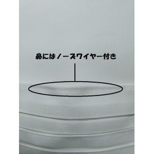 マスク 洗えるプリーツマスク(2枚入り) 南三陸製造|asutoro|05