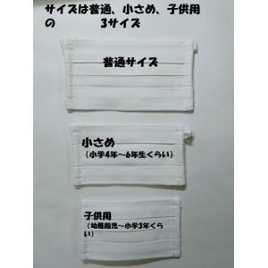 マスク 洗えるプリーツマスク(2枚入り) 南三陸製造|asutoro|09
