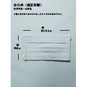 マスク 洗えるプリーツマスク(2枚入り) 南三陸製造|asutoro|10