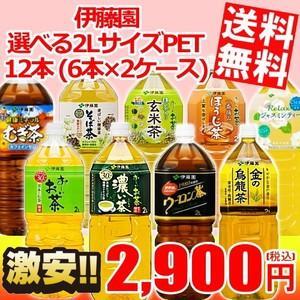 送料無料 伊藤園 2Lペットボトルシリーズ 12本(6本×2ケース) (おーいお茶)|at-cvs