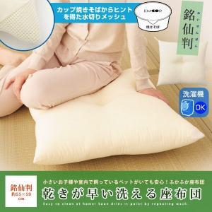 乾きが早い洗える座布団 55×59cm 銘仙判 洗える ウォッシャブル 丸洗い 日本製 水切りメッシュ ヌードクッション cushion|at-emoor