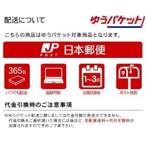 Ploom TECH ケース プルームテック ケース 手帳型 ストラップ付き 全4色 PUレザーケース 電子タバコ 禁煙 スターターキット|at-parts7117|07