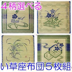い草座布団 純国産 5枚組 夏 草花柄 両面捺染 55×55cm お盆 法事