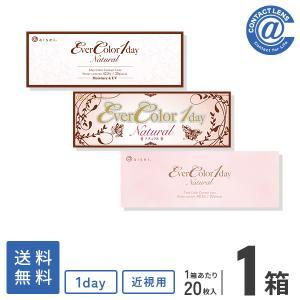 【YM】【B1】カラコン カラーコンタクト エバーカラーワンデーナチュラル20枚×1箱 送料無料|atcontact