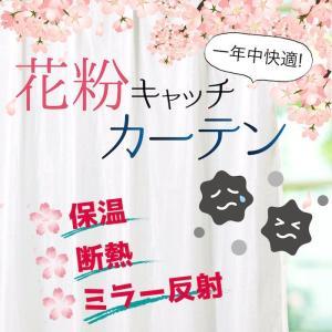 花粉キャッチ カーテン レース ミラー 断熱 保温 レースカーテン エタンドル(2枚組)お得サイズ