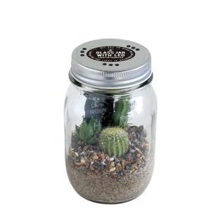 サボテン入り LEDライト付ガラスジャー スパイス GLASS JAR WITH LED SABOTEN Sサイズ|atease