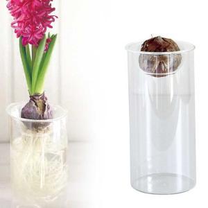 水栽培 球根用 花瓶 フラワーベース ガラス製 スパイス バルブベース ロング シンプル|atease