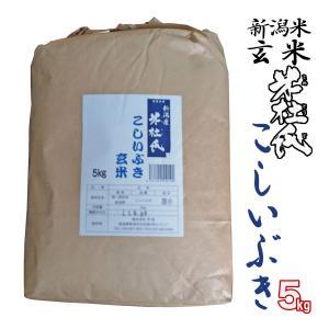 新米 玄米5kg 新潟県産こしいぶき 5kg「米杜氏」環境保全 契約 栽培米 (新潟米 お米 29年度)|atechigo