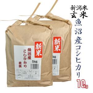 玄米 10kg 魚沼産 コシヒカリ 松代 棚田米 米杜氏 環境保全 契約 栽培米 (新潟米 お米 令和元年産 R1)|atechigo