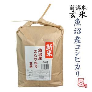 玄米 5kg 魚沼産 コシヒカリ 松代 棚田米 米杜氏 環境保全 契約 栽培米 (新潟米 お米 令和元年産 R1)|atechigo