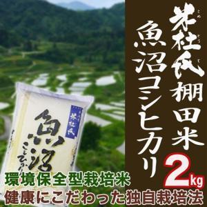 白米  2kg 新潟 魚沼産 コシヒカリ (十日町指定) 米杜氏 環境保全 契約 栽培米 (新潟米 お米 令和元年産 R1)|atechigo