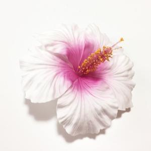 ハイビスカス へアークリップ (L)〈 ホワイト ピンク 〉ヘアーピン ハワイアン フラダンス アクセ コサージュ 髪飾り|atelier-ayumi