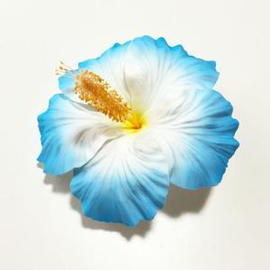 ハイビスカスへアークリップ(L)〈ブルー〉ヘアーピン ハワイアンフラダンスアクセ コサージュ 髪飾り|atelier-ayumi
