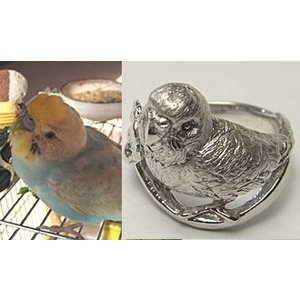 【ペットリング】写真から作るあなたのペット【そっくり指輪】SV制作例2|atelier-ti