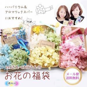 【メール便送料無料】enさんchiiさんのお花の福袋 3種セット