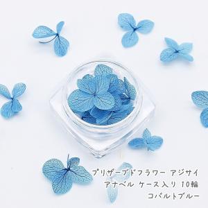 色鮮やかなプリザーブドフラワーの紫陽花アナベルです。 ふわふわ儚く優しい色合いの花びらが綺麗です。 ...