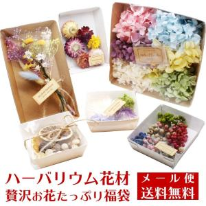 【メール便送料無料】ハーバリウム花材 贅沢お花たっぷり福袋 2020新春