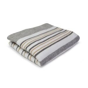 電気毛布/洗えるダニ退治抗菌防臭温度調節付 あったかアイテムaem507/508|atex