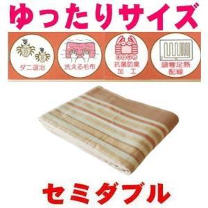ゆったり大判セミダブルサイズ洗える掛敷電気毛布/抗菌防臭温度調節付/あったかアイテム|atex