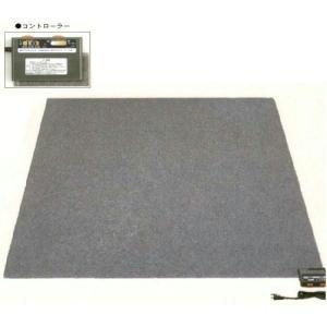 電気ホットカーペット2畳用/面積切替省エネクリーン暖房/ダニ退治タイマー付atwa2000b