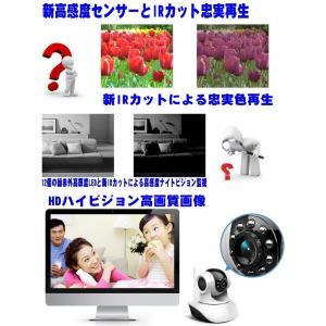 業界初 家電遠隔リモコン機能 HD高画質ハイビジョンIPネットワークカメラ/防犯カメラ 赤外IPカメラ/WIFI/Iphone/スマホ対応STARCAM PRO IR CONTROL D35|atex|04