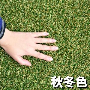 人工芝 芝生 色までリアルなロール人工芝 芝丈20mm (幅1m × 長さ2m) 安全検査実施済|atgarden|03