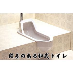 【在庫有】洋式便座 リフォームトイレ リホームトイレ 両用式 athenesys 03