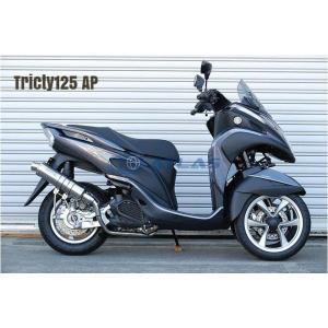 CORES コアーズ Exhaust Tricity125 トリシティ CE01 S-Type Ver-AP CE01-TR0001-AP マフラー|atlas-parts