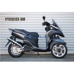 CORES コアーズ Exhaust Tricity125 トリシティ CE01 S-Type Ver-BM CE01-TR0001-BM マフラー|atlas-parts