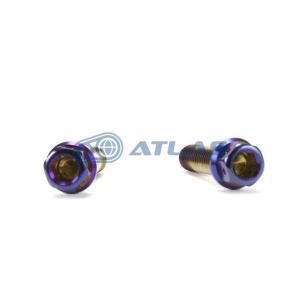 メール便対応可 ☆Star Bolt CNC加工 ヘキサゴンヘッド SUS PVDチタンコート ボルト M8×30mm P1.25mm 焼き色ブルー仕上げ|atlas-parts