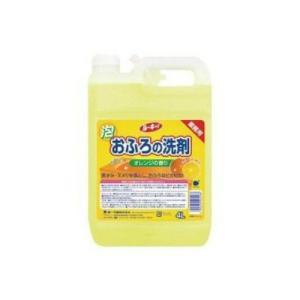 第一石鹸 ルーキーV おふろの洗剤(4902050405568) atlife