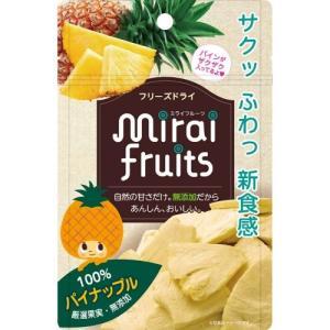 テクセルジャパン ミライフルーツ パイナップル(10g) 1個|atlife