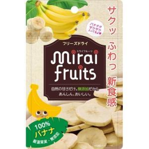 テクセルジャパン ミライフルーツ バナナ(12g) 1個|atlife