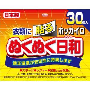 興和 ホッカイロ ぬくぬく日和 貼る レギュラー 30個 (4987067829705)
