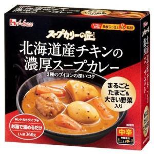 ハウス食品 スープカリー 濃厚スープカレー 360g (4902402865828)|atlife