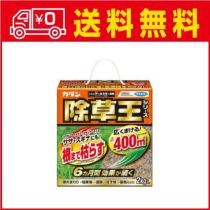 JAN:4902424426045  カダン 除草王 オールキラー粒剤 2kg  ブランド:カダン ...