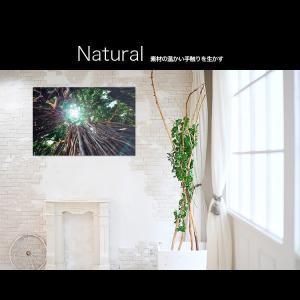 【日本製】アートボード/アートパネル artmart アートマート 絵画や写真をアルミフレームで表現するインテリアコーディネイト(90p-aa0012-grn-sa) atmys